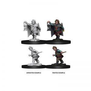 Dungeons & Dragons: Male Halfling Rogue