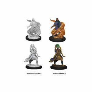 Dungeons & Dragons: Male Elf Sorcerer