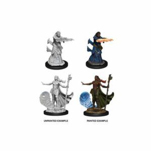 Dungeons & Dragons: Female Human Wizard