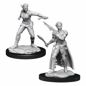 Dungeons & Dragons: Shifter Rogue Female