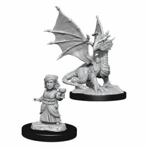 Dungeons & Dragons: Silver Dragon Wyrmling & Female Halfling