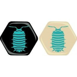 Hive: Exp Bicho-bola