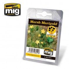 MARSH MARIGOLD A.MIG-8451