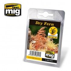 DRY FERN A.MIG-8457